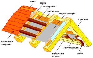 Struktura-konka-kryishi